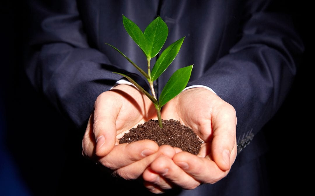 Helping to grow your business